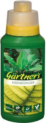Eisendünger 250 ml